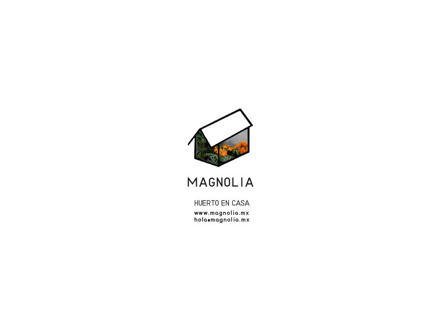 primal_web_m005_magnolia_02.jpg